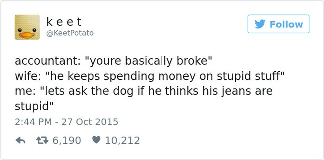 jeans dog tweet