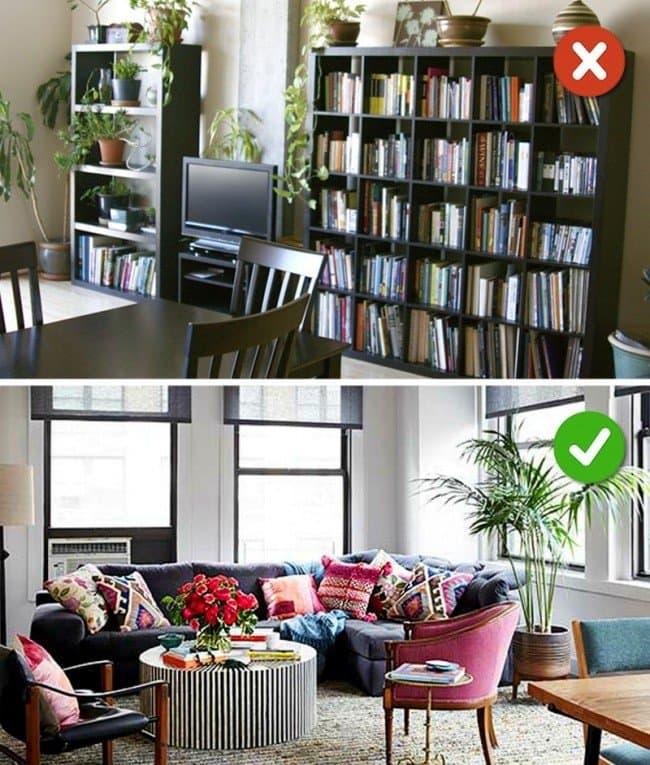 plants books room
