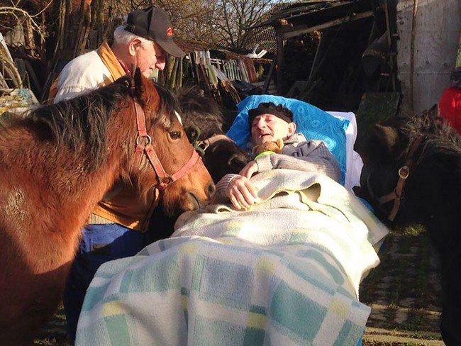 sick man ponies