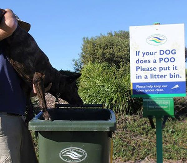 taking rules literally if your dog does a poo