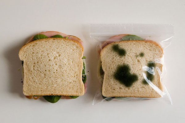 unique inventions anti theft lunch bags