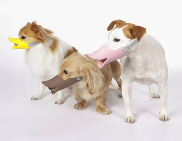 unique inventions duck bill dog muzzle