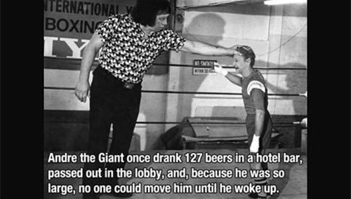 andre the giant fact