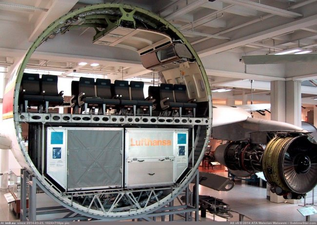 cross section aeroplane