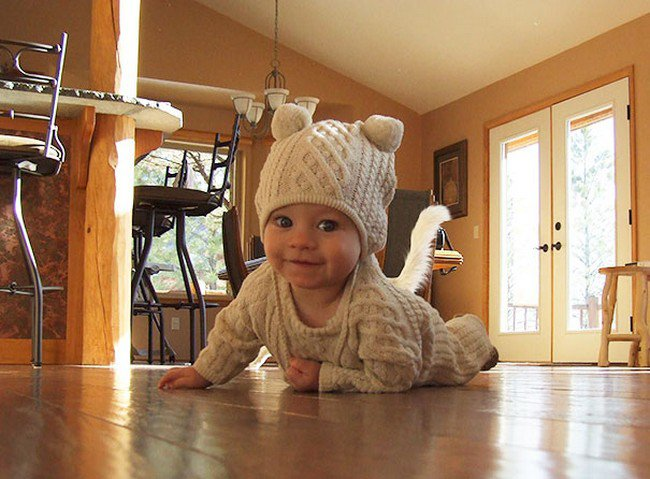 funny cat photobombs baby tail