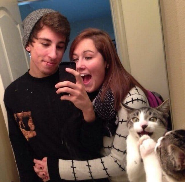 funny cat photobombs couple cat mirror