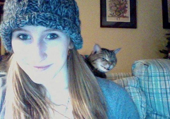 funny cat photobombs girl selfie cat