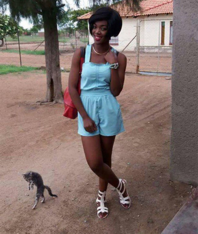funny cat photobombs girl standing cat