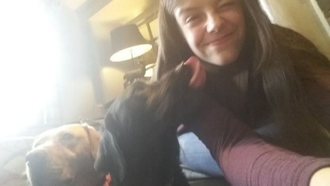 life with dogs licking owner