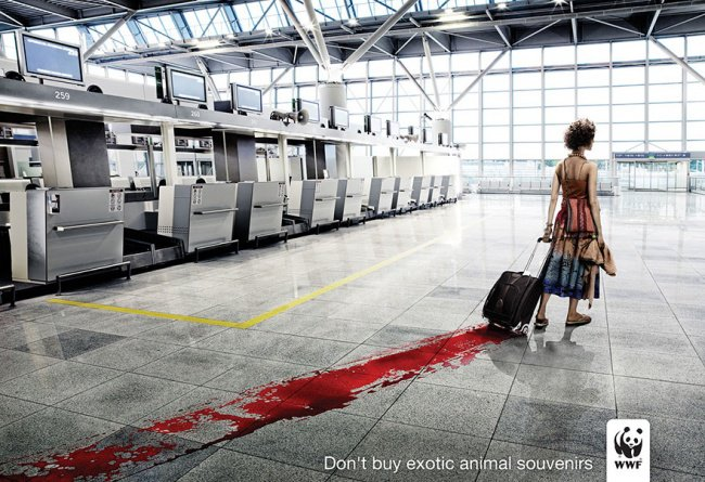 powerful advertising do not buy exotic animal souvenirs