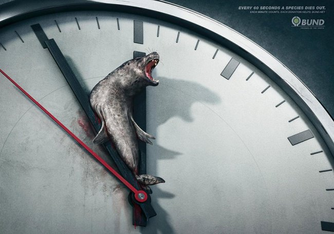 powerful advertising every 60 seconds a species dies out
