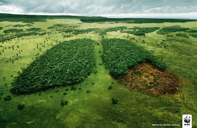 powerful advertising forests are the planets lungs