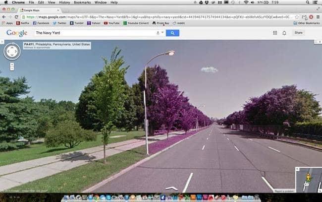 strange things google maps purple trees