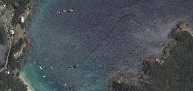 strange things google maps sea snake wake new zealand