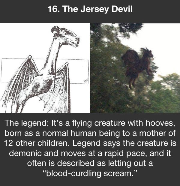 urban legends the jersey devil