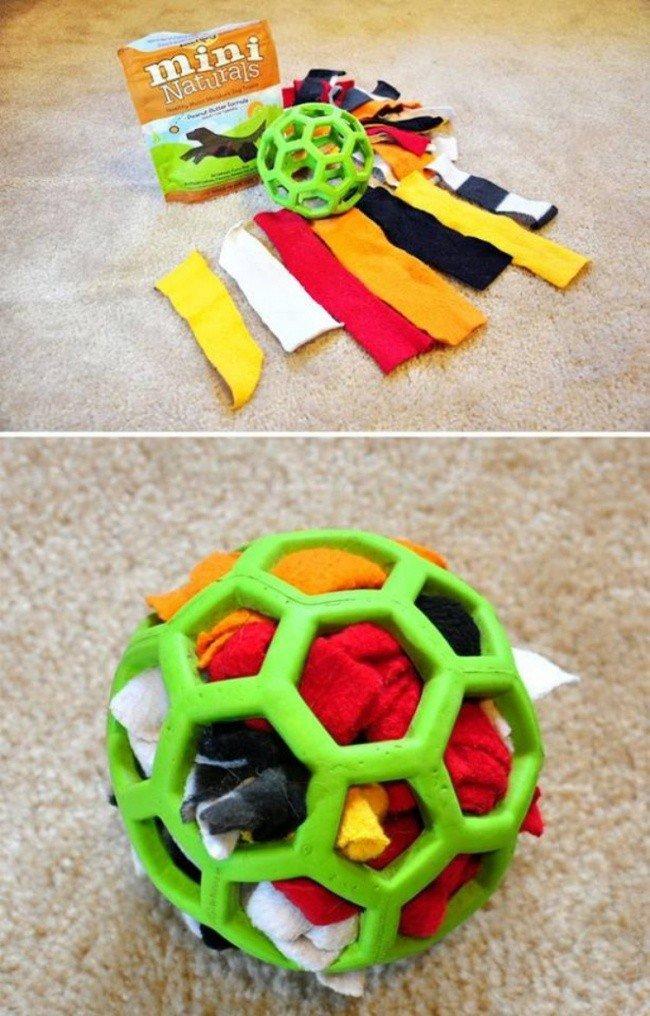 useful pet tips dog rag ball
