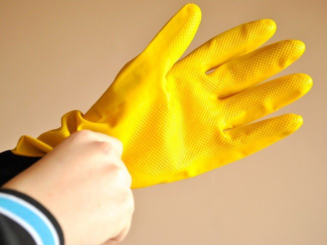 useful pet tips rubber glove