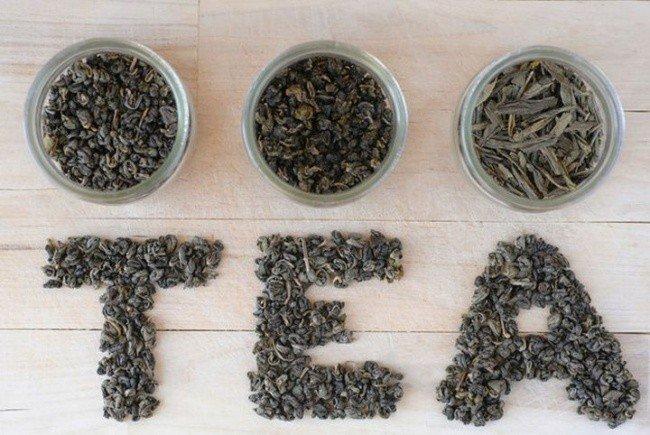 useful pet tips tea