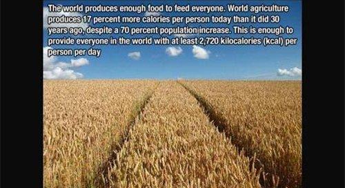 world produce food fact