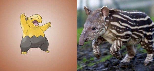 drowzee malayan tapir