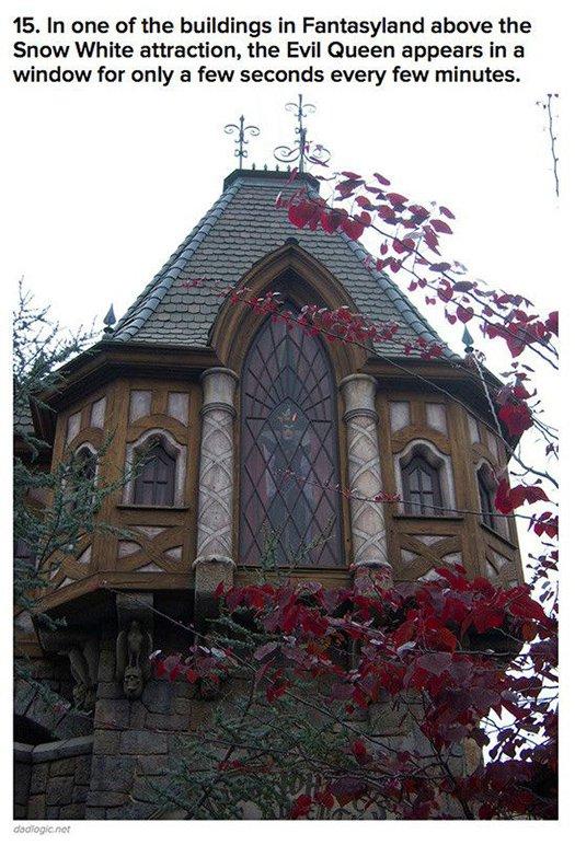 evil queen appears in in window every few minutes disneyland
