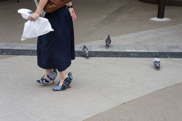 japanese woman pigeon shoes