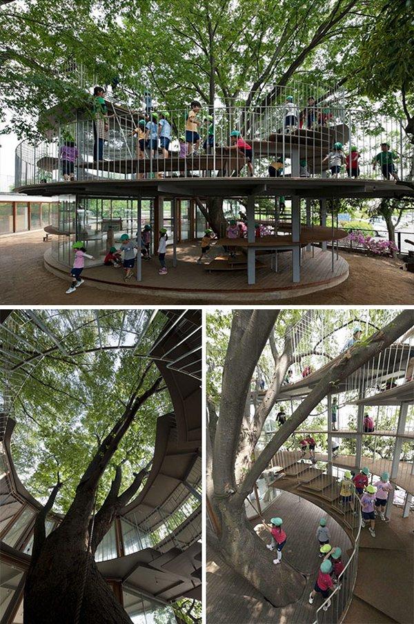 kindergarten built around tree