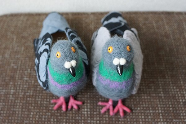 pair of pigeon shoes