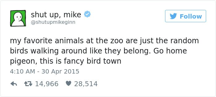 shut up mike tweet fancy bird town