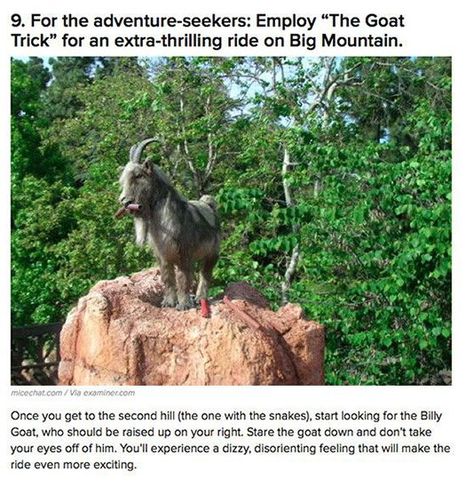 the goat trick big mountain