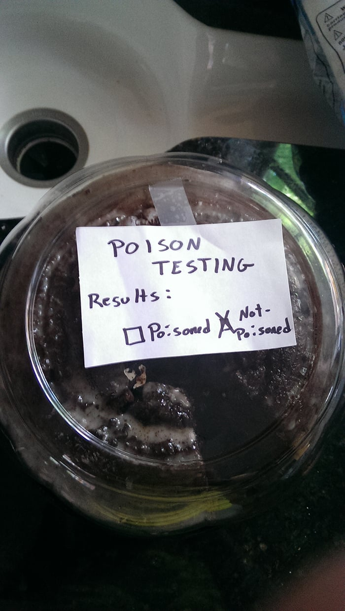 Clever People posion testing cake