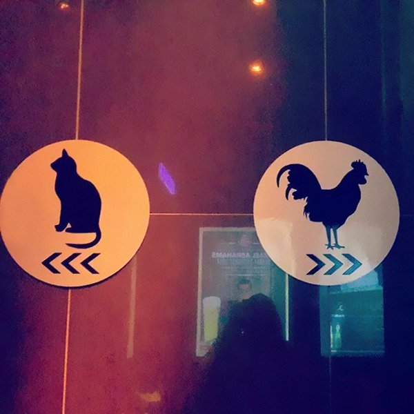 Creative Bathroom Signs cat cockrel