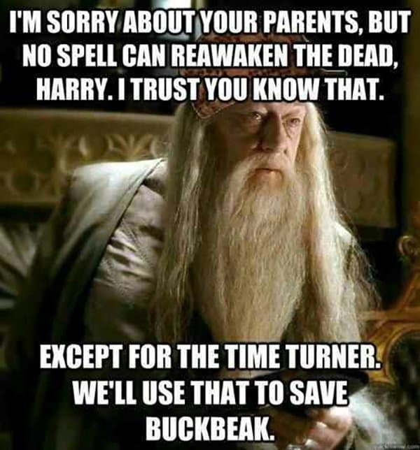 Image result for dumbledore meme time turner