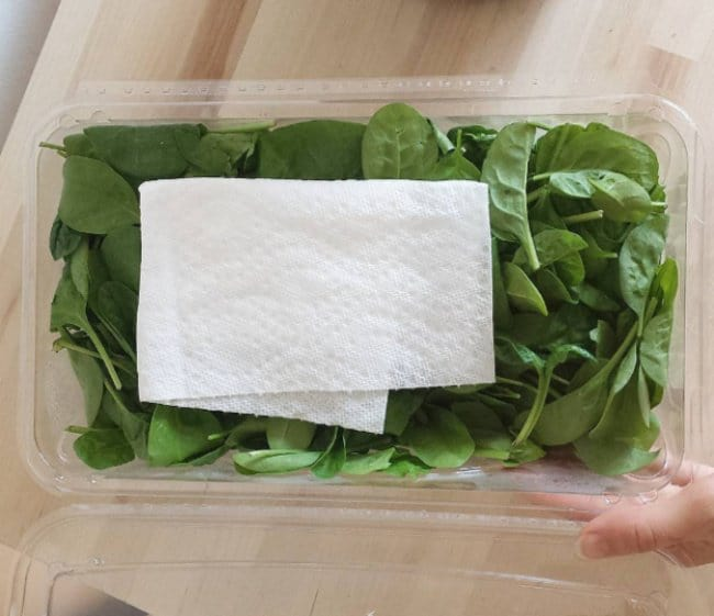 Ingenious Life Hacks paper towel keep salad fresh