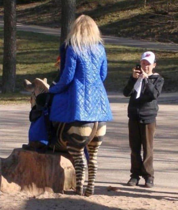 Mind Boggling Pictures zebra legs