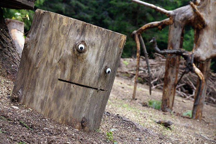 googly eyes on broken things tree stump