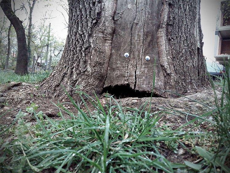 googly eyes on broken things tree