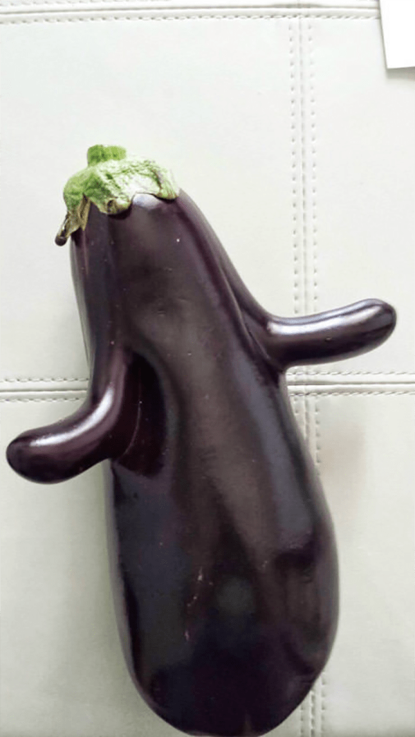 intriguing images eggplant with arms