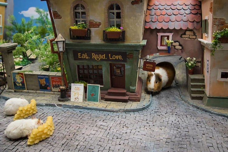 miniature town for hamsters eat read love