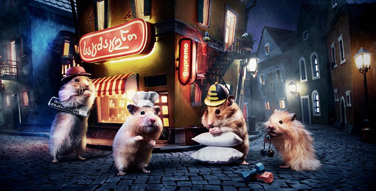 miniature town for hamsters movie poster