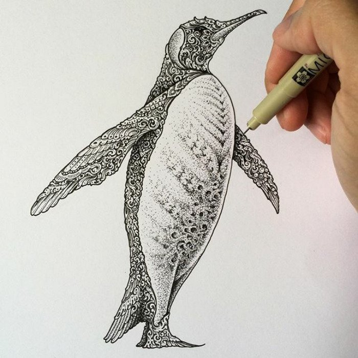 visoth kakvei doodles penguin