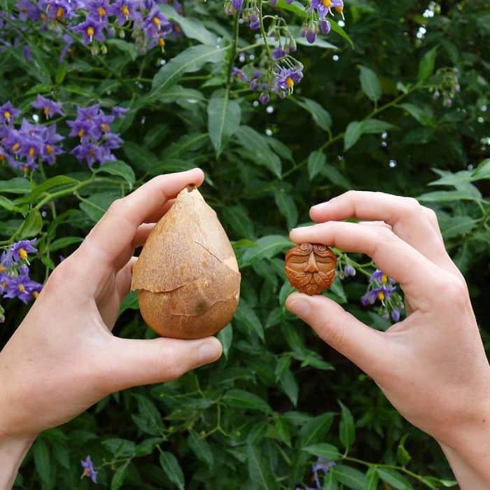Artist Carves Avocado Pits comparison
