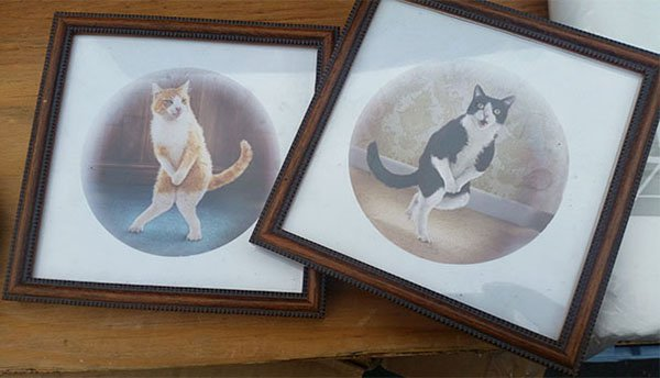 Best Things In Thrift Stores cat paintings