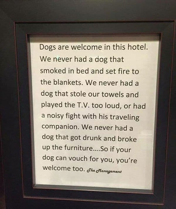 Genius Hotels dogs are welcome