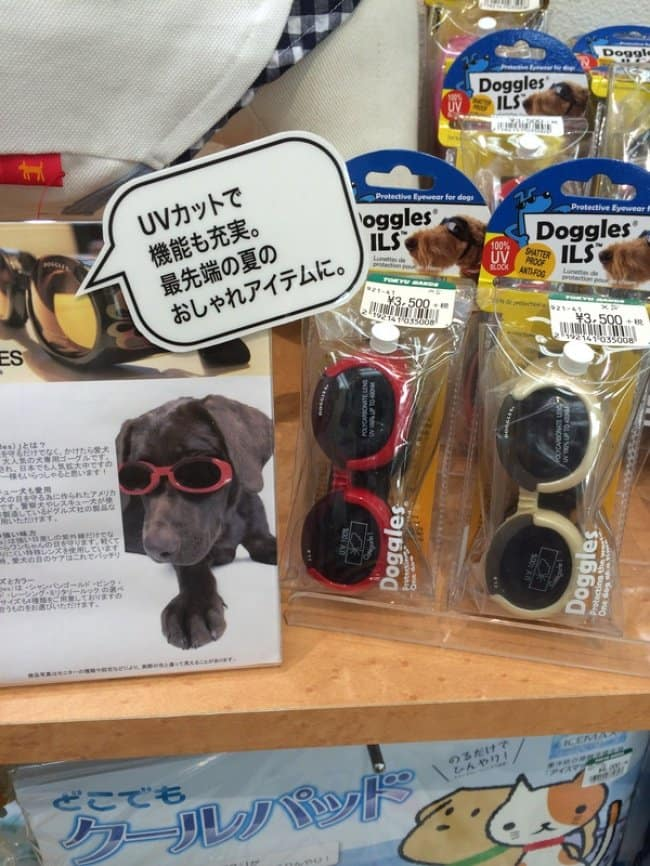 Genius Japanese Inventions sunglasses for dogs