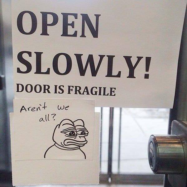 Genius Vandalism arent we all fragile