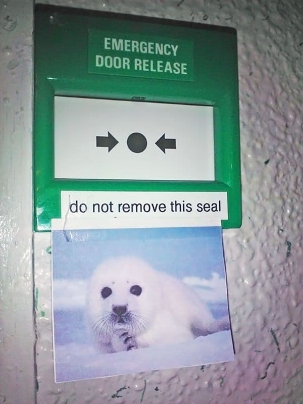 Genius Vandalism do not remove this seal