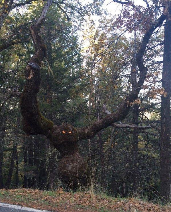 Genius Vandalism monster tree