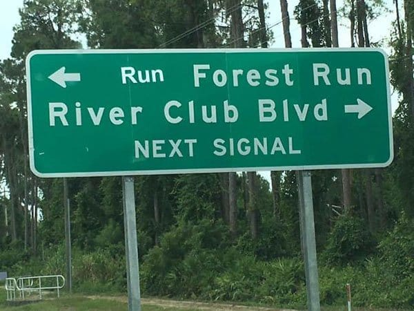 Genius Vandalism run forest run