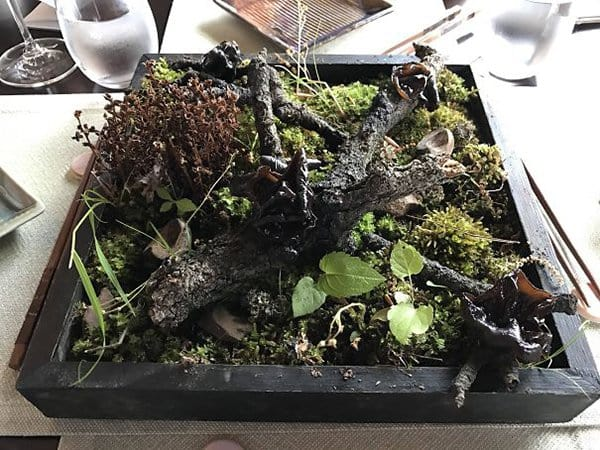Hipster Restaurants Went Too Far With Food Serving mushrooms served on garden